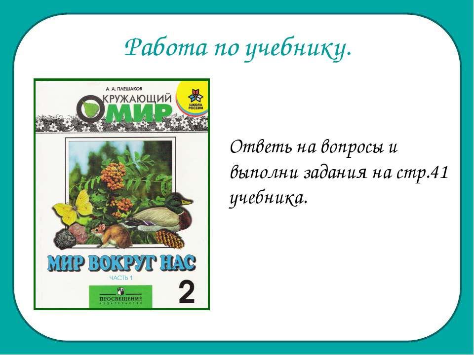 Работа по учебнику. Ответь на вопросы и выполни задания на стр.41 учебника.