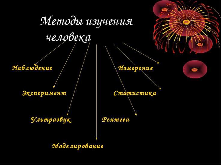 Методы изучения человека Наблюдение Измерение Эксперимент Статистика Ультразв...