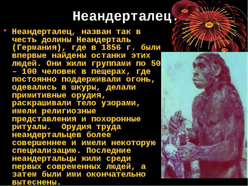 Неандерталец. Неандерталец, назван так в честь долины Неандерталь (Германия),...
