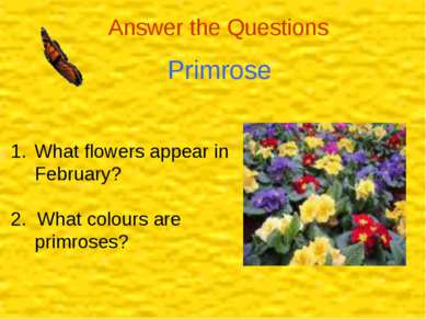 Answer the Questions Primrose What flowers appear in February? 2. What colour...