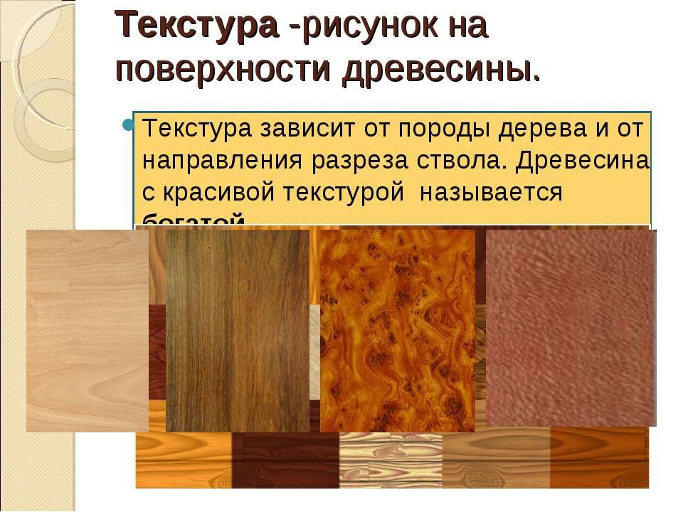 Текстура -рисунок на поверхности древесины. Текстура зависит от породы дерева...