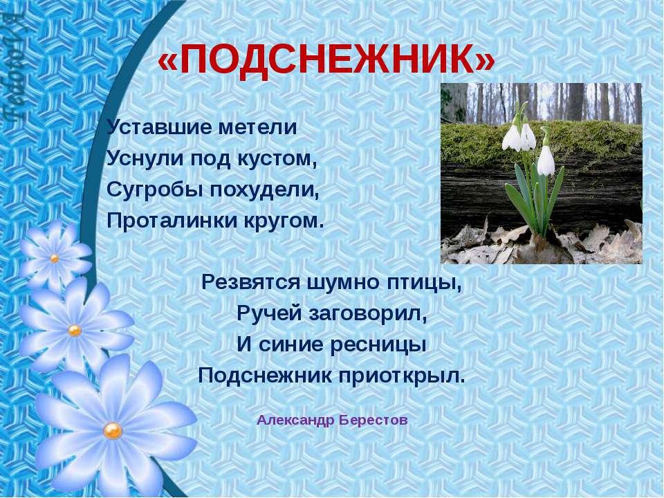 «ПОДСНЕЖНИК» Уставшие метели Уснули под кустом, Сугробы похудели, Проталинки ...