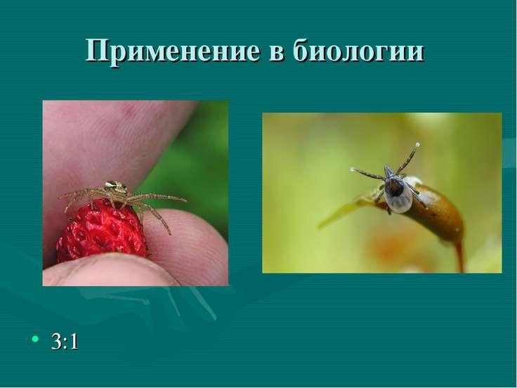 Применение в биологии 3:1