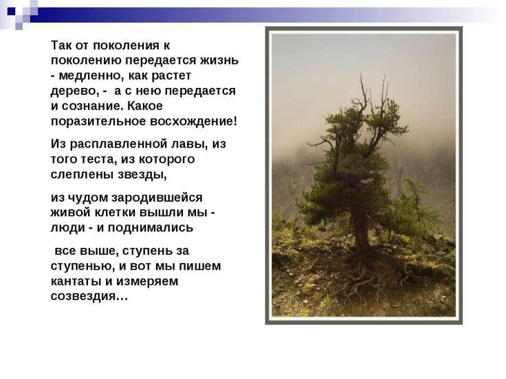 Так от поколения к поколению передается жизнь - медленно, как растет дерево, ...