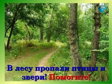 В лесу пропали птицы и звери! Помогите!