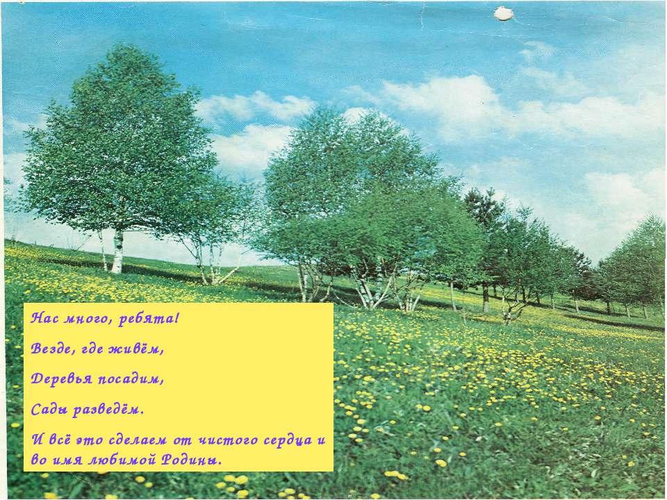Нас много, ребята! Везде, где живём, Деревья посадим, Сады разведём. И всё эт...
