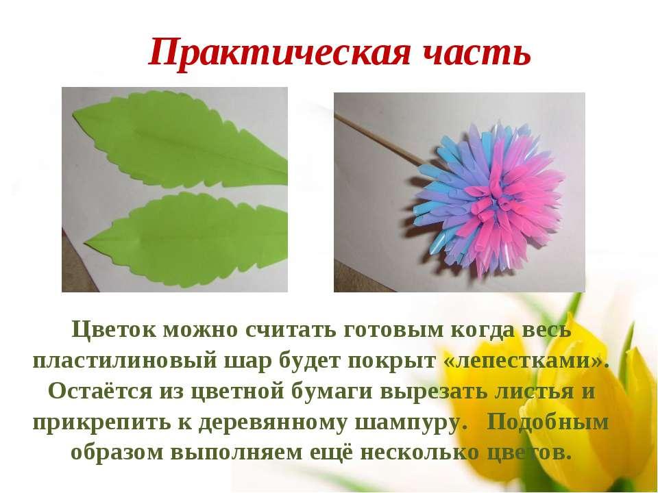 Цветок можно считать готовым когда весь пластилиновый шар будет покрыт «лепес...