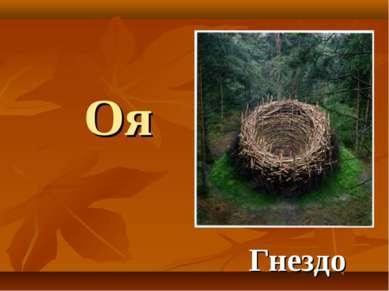 Оя Гнездо