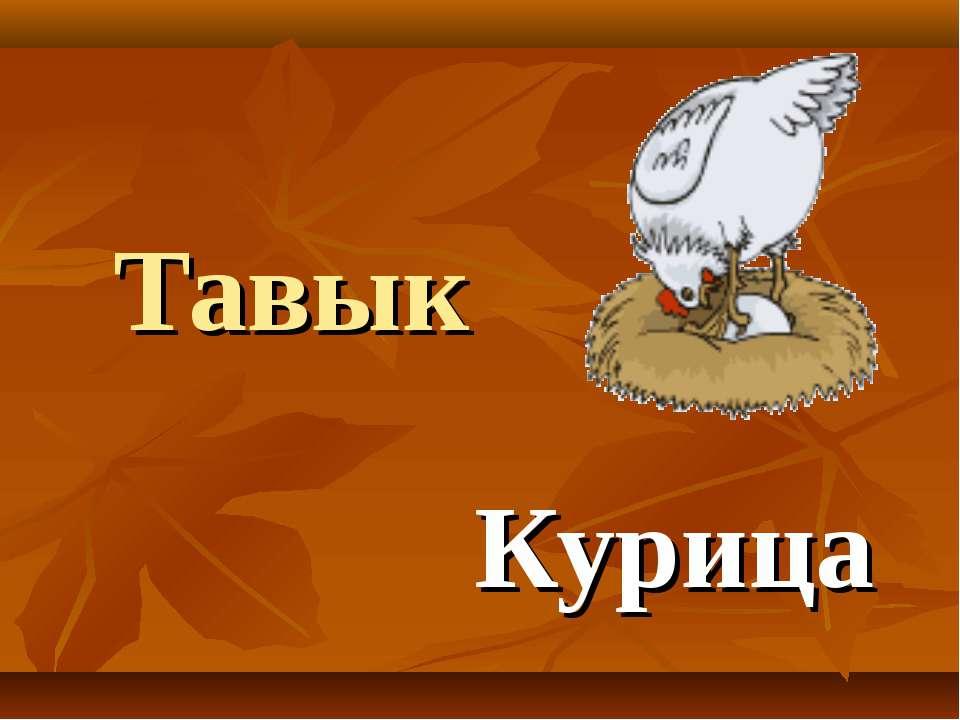 Тавык Курица