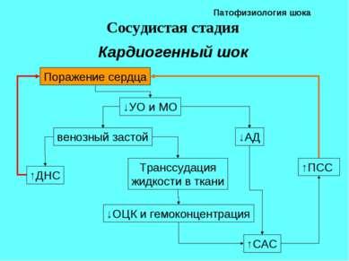 Патофизиология шока Сосудистая стадия Кардиогенный шок ↑ПСС Поражение сердца ...