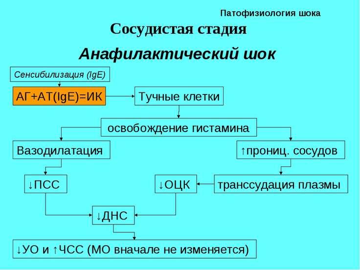 Патофизиология шока Сосудистая стадия Анафилактический шок АГ+АТ(IgE)=ИК Сенс...