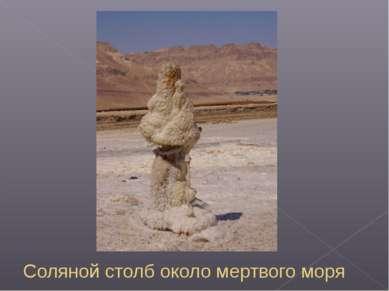 Соляной столб около мертвого моря