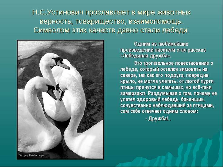 Н.С.Устинович прославляет в мире животных верность, товарищество, взаимопомощ...