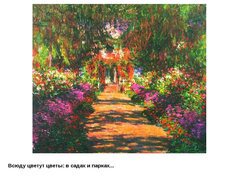 Всюду цветут цветы: в садах и парках...