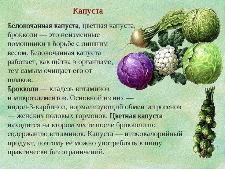 какие витамины в капусте белокочанной
