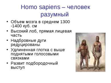 Homo sapiens – человек разумный Объем мозга в среднем 1300 -1400 куб. см Высо...