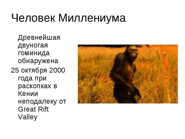 Человек Миллениума Древнейшая двуногая гоминида обнаружена 25 октября 2000 го...
