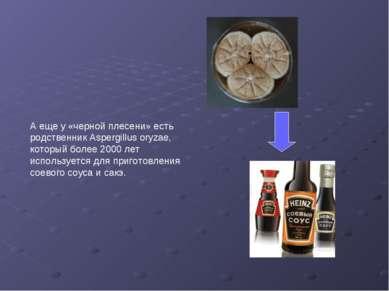 А еще у «черной плесени» есть родственник Aspergillus oryzae, который более 2...