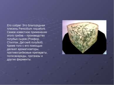 Его собрат Это благородная плесень Penicillium roqueforti. Самое известное пр...