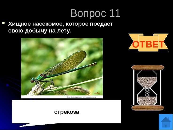 Список источников http://2.firepic.org/2/images/2011-12/18/vt0wiwxd87ru.jpg д...