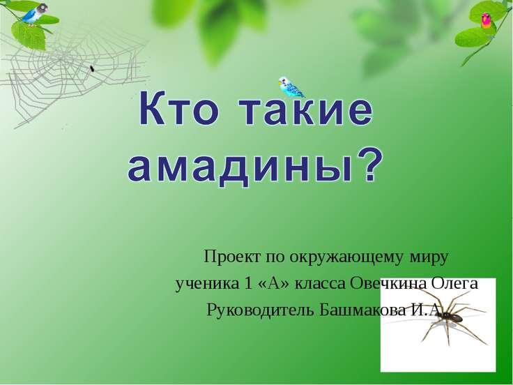 Проект по окружающему миру ученика 1 «А» класса Овечкина Олега Руководитель Б...