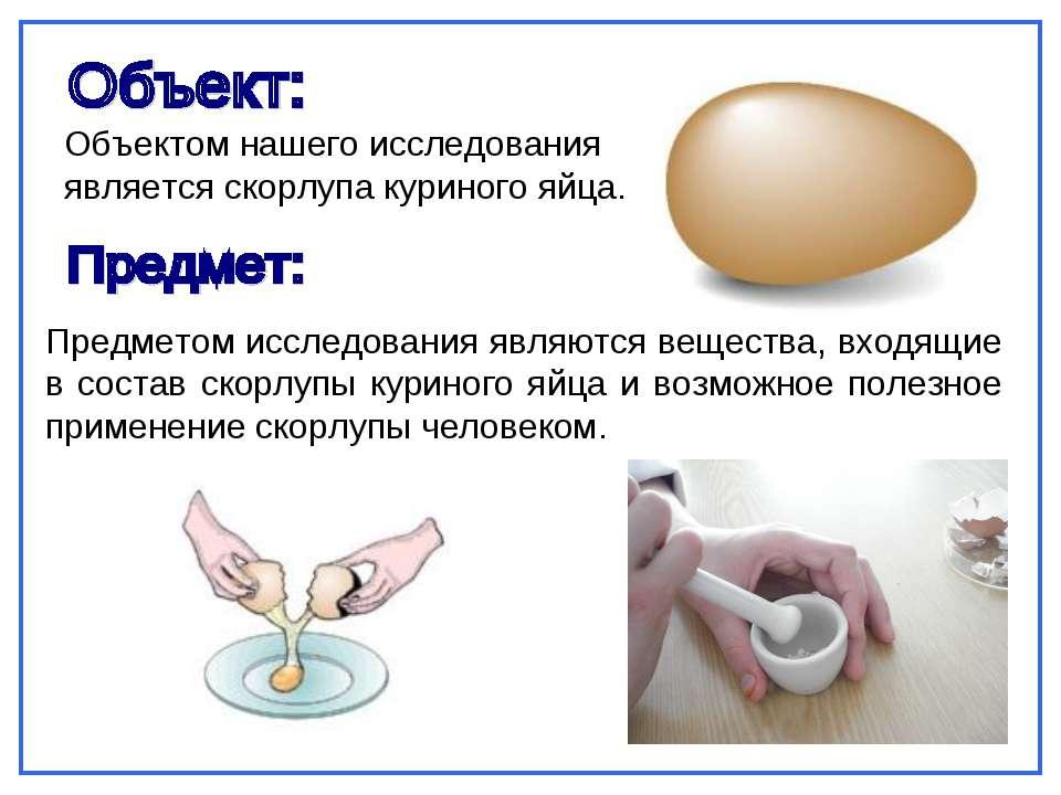 Предметом исследования являются вещества, входящие в состав скорлупы куриного...