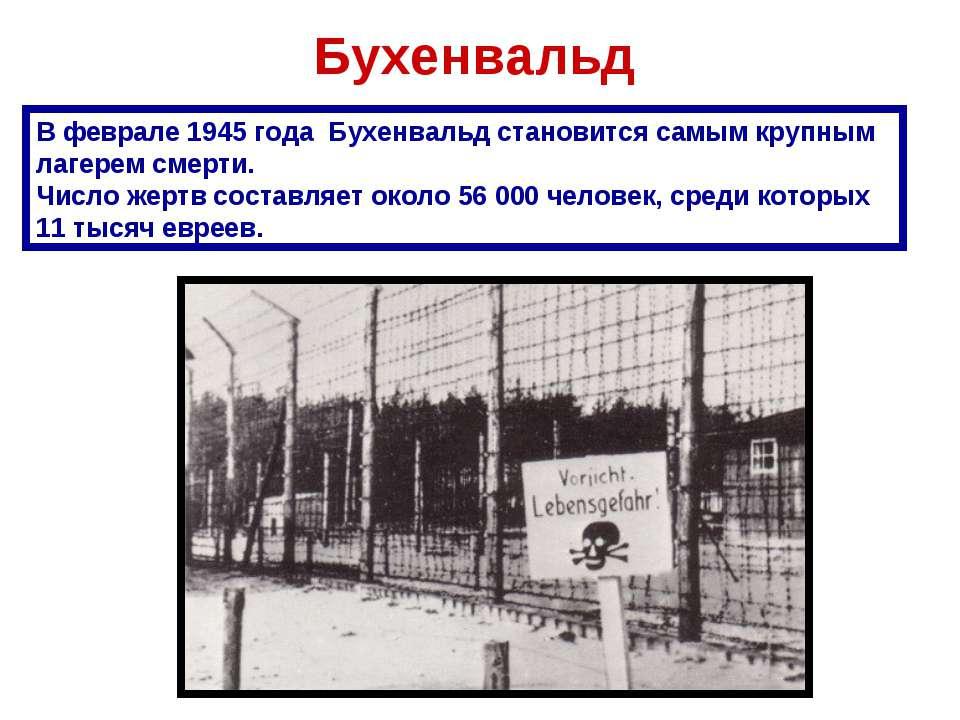 Бухенвальд В феврале 1945 года Бухенвальд становится самым крупным лагерем см...