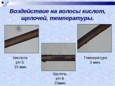 Воздействие на волосы кислот, щелочей, температуры. Кислота рН 5 15 мин Щелоч...