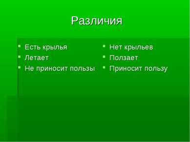 Различия Есть крылья Летает Не приносит пользы Нет крыльев Ползает Приносит п...