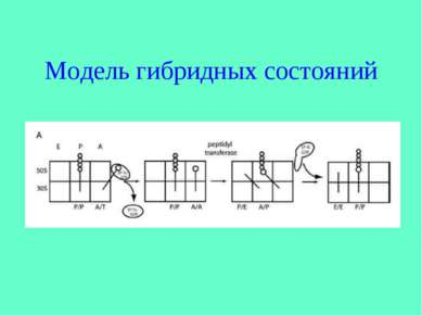 Модель гибридных состояний