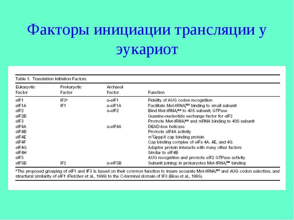 Факторы инициации трансляции у эукариот