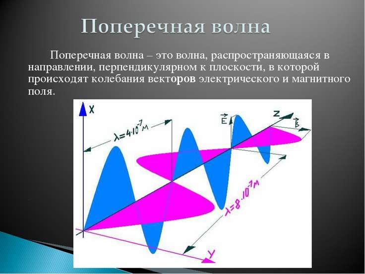 Поперечная волна – это волна, распространяющаяся в направлении, перпендикуляр...