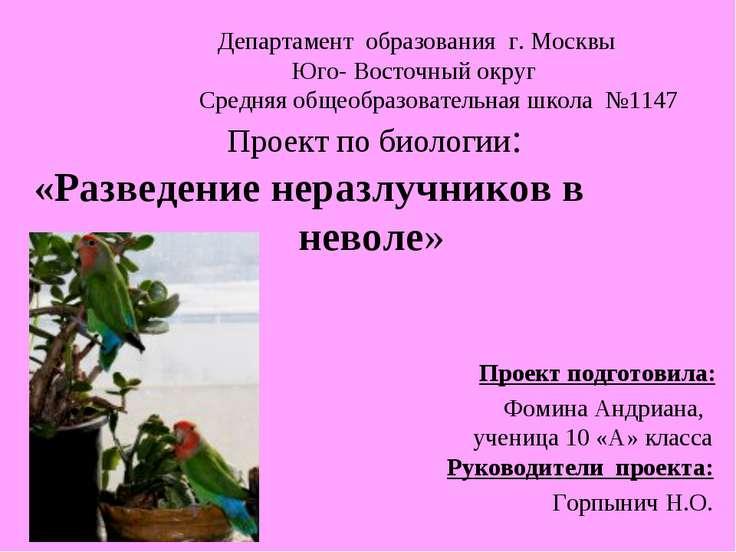 Департамент образования г. Москвы Юго- Восточный округ Средняя общеобразовате...