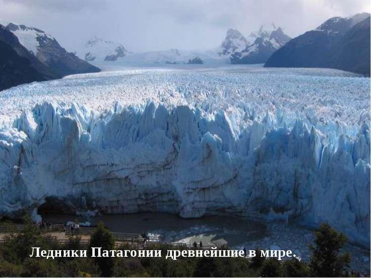 Ледники Патагонии древнейшие в мире.
