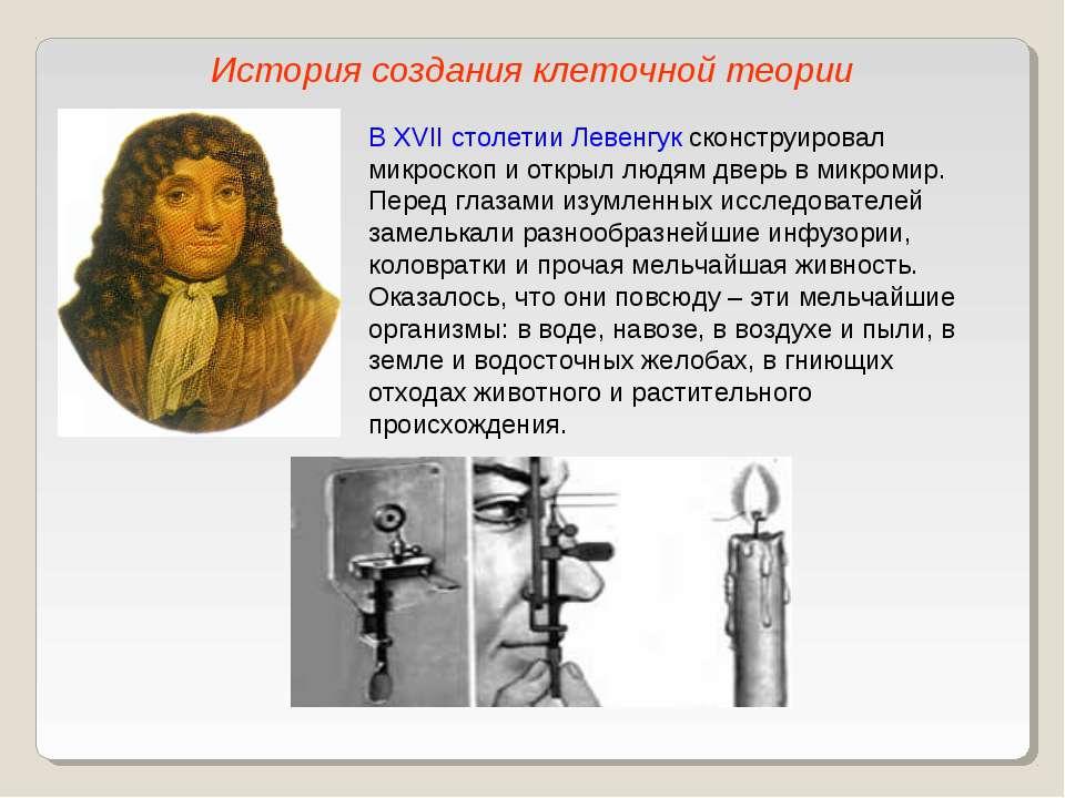 В XVII столетии Левенгук сконструировал микроскоп и открыл людям дверь в микр...