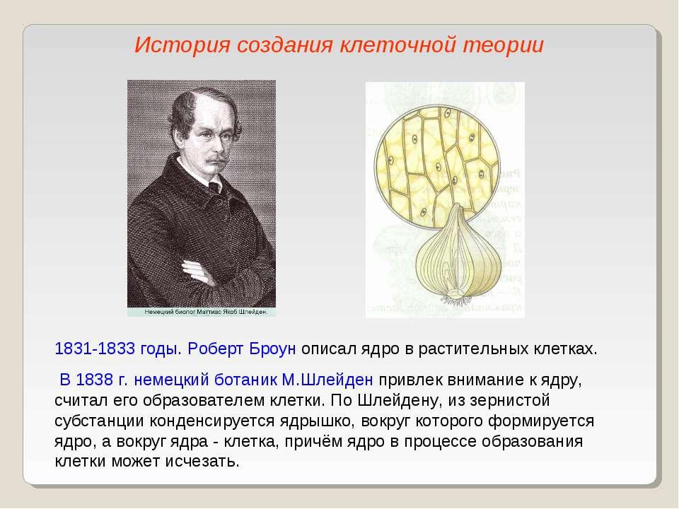 1831-1833 годы. Роберт Броун описал ядро в растительных клетках. В 1838 г. не...