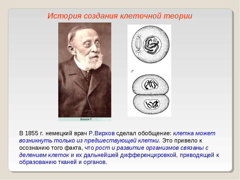 В 1855 г. немецкий врач Р.Вирхов сделал обобщение: клетка может возникнуть то...
