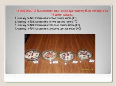 18 января 2010г был заложен опыт, в каждую чашечку было положено по 10 семян ...