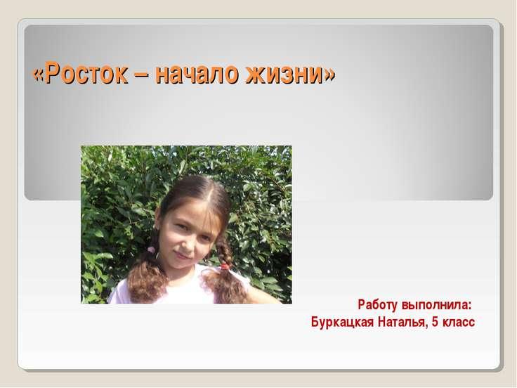 «Росток – начало жизни» Работу выполнила: Буркацкая Наталья, 5 класс