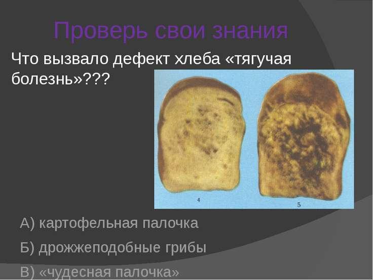 Проверь свои знания А) картофельная палочка Б) дрожжеподобные грибы В) «чудес...