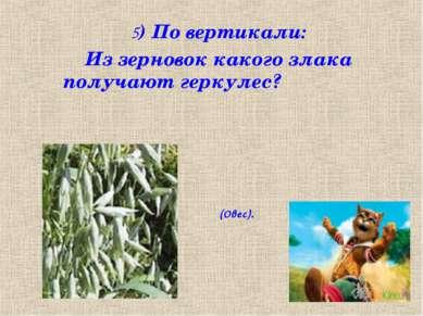 5) По вертикали: Из зерновок какого злака получают геркулес? (Овес).