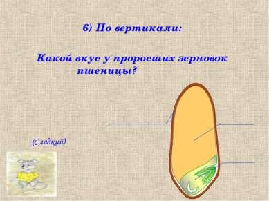 6) По вертикали: Какой вкус у проросших зерновок пшеницы? (Сладкий)