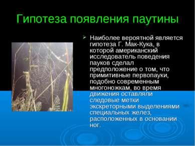 Гипотеза появления паутины Наиболее вероятной является гипотеза Г. Мак-Кука, ...