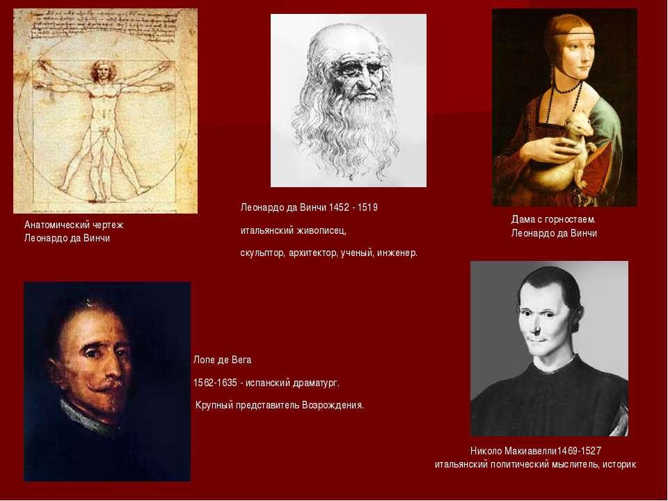 Анатомический чертеж Леонардо да Винчи Дама с горностаем. Леонардо да Винчи Л...