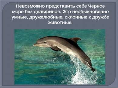 Невозможно представить себе Черное море без дельфинов. Это необыкновенно умны...