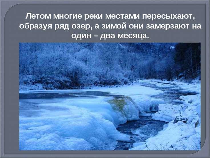 Летом многие реки местами пересыхают, образуя ряд озер, а зимой они замерзают...
