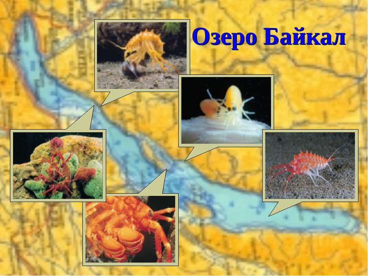 * Озеро Байкал