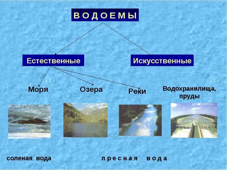В О Д О Е М Ы Искусственные Естественные п р е с н а я в о д а соленая вода М...