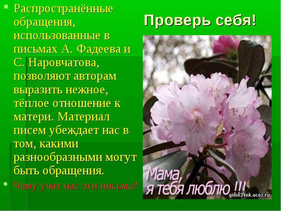 Проверь себя! Распространённые обращения, использованные в письмах А. Фадеева...