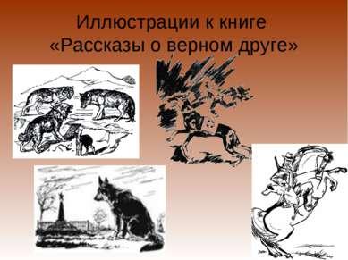 Иллюстрации к книге «Рассказы о верном друге»